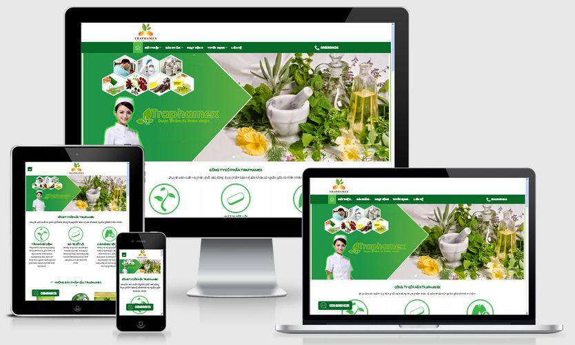 Fullcode website công ty dược phẩm FC073 1