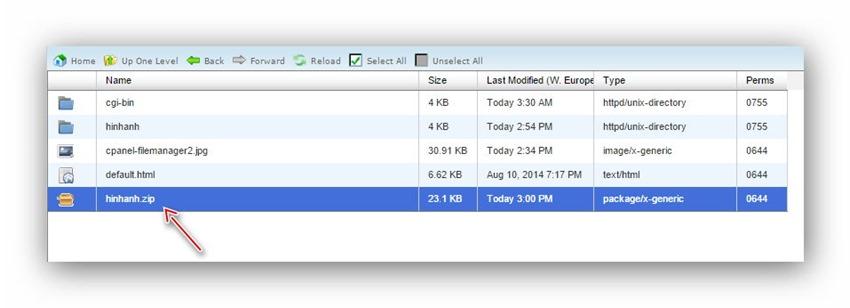 Quản lý tập tin/thư mục trên host dùng cPanel 19