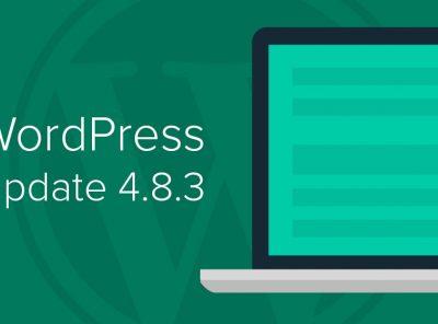 Hướng dẫn chuyển WordPress về phiên bản thấp hơn 8