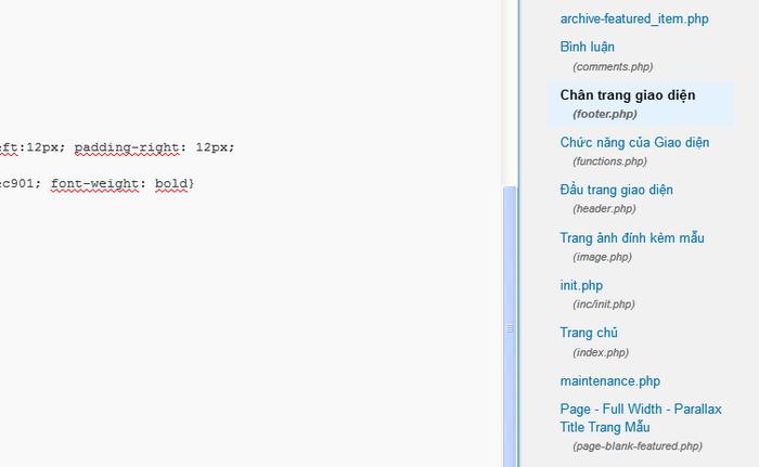 Hướng dẫn chỉnh sửa code trong file footer.php Wordpress 3