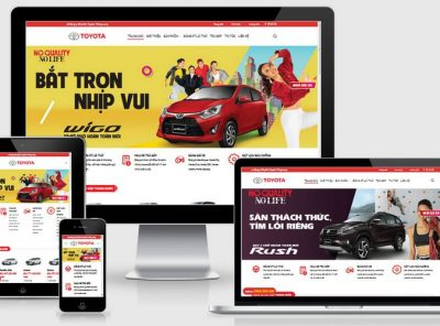 Fullcode website Toyota Thăng Long FC248 23